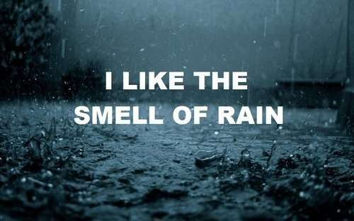 I like the smell of rain
