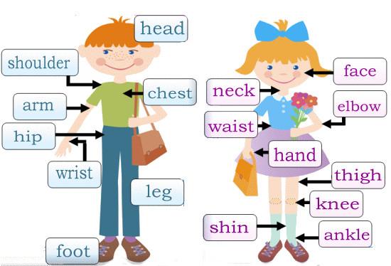 фото английский для малышей